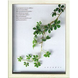 造花 アートフラワー パネル 観葉植物 カフェ シュガーバイン 壁掛け ハーブ おしゃれ フェイクグリーン インテリア アートパネル ナチュラル キッチン ギフト arne