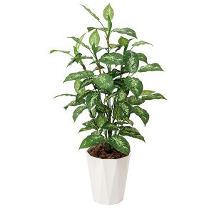 母の日 ギフト 花 光触媒 観葉植物 人工観葉植物 造花 大...