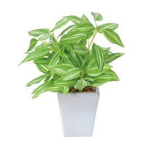 母の日 ギフト 花 光触媒 観葉植物 人工観葉植物 造花 卓...