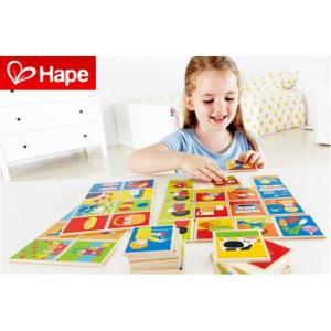 知育玩具 4歳 5歳 6歳 木のおもちゃ 玩具 子供 幼児 おもちゃ 教育 木製 カード 誕生日 プレゼント Hape ハペ E6307 ストーリーラインズ|arne