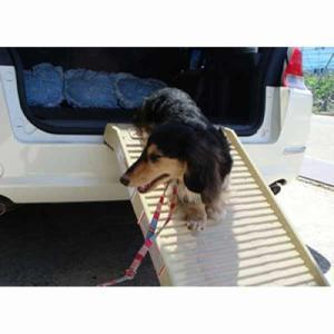 ペットステップ・ハーフサイズ 犬 イヌ 介護用品 階段 ステップ (OFT)|aroma-etoile