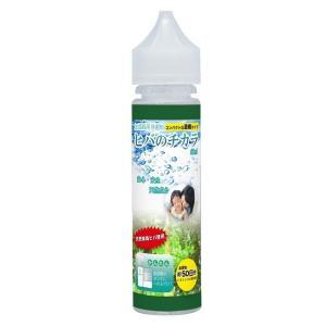 【日本製】 加湿器用 除菌剤 濃縮タイプ 60ml ヒバのチカラ コンパクトな濃縮タイプ( 加湿器 除菌剤 )|aroma-etoile