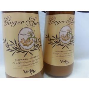ジンジャーシロップ 2本セット しょうがの濃縮エキス じょうがが濃いシロップ aromaecho