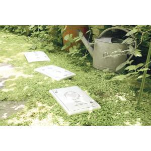 トランプフットステップ キシマ 踏み石 庭 庭石 ガーデンニング ステップストーン おしゃれ かわいい タイル aromainterior