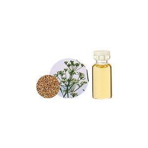 アニスシード10ml 生活の木 エッセンシャルオイル 天然 アロマオイル|aromainterior
