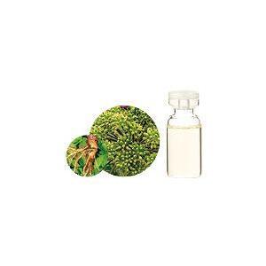アンジェリカ 10ml 生活の木 エッセンシャルオイル 天然 アロマオイル 送料無料|aromainterior