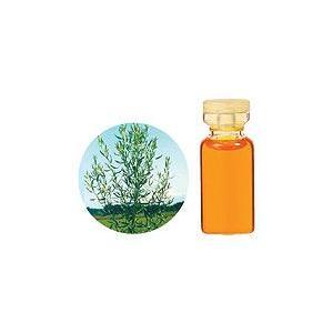 タラゴン 10ml  生活の木 エッセンシャルオイル 天然 アロマオイル|aromainterior