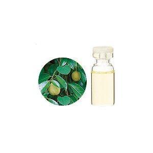 ナツメグ 10ml  生活の木 エッセンシャルオイル 天然 アロマオイル|aromainterior