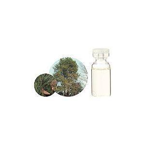 パイン 10ml  生活の木 エッセンシャルオイル 天然 アロマオイル|aromainterior