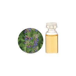聖書にも登場する伝統的ハーブ。温かく、やや甘みがあり、しみとおる刺激的な香り。  容量:10ml 原...