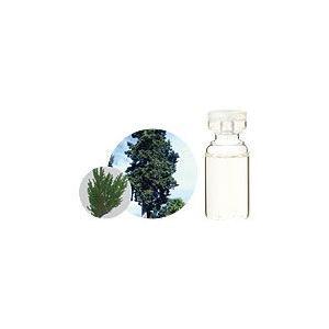 有機サイプレス 10ml  生活の木 エッセンシャルオイル 天然 アロマオイル|aromainterior