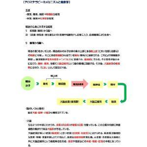 アロマテラピー検定1級 受験対策3点セット(公式テキスト&精油) オリジナル参考書付! aromedesaison 05