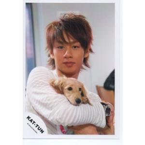 中丸雄一(KAT-TUN) 公式生写真/衣装白・カメラ目線・犬持ち arraysbook