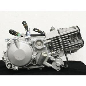 デイトナ製高性能競技用横型コンプリートエンジン『Daytona Anima190cc』