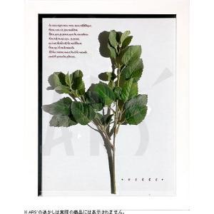 インテリアアート/リーフアートパネル ハーブフレーム ミント(タペストリー/ウォールアート/絵画 インテリア/北欧)|arsonline