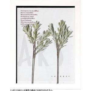 インテリアアート/リーフアートパネル ハーブフレーム ブルーアイス(タペストリー/ウォールアート/絵画 インテリア/北欧)|arsonline