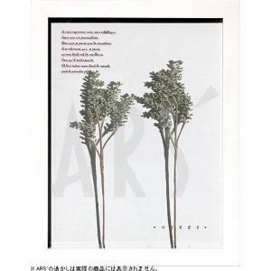 インテリアアート/リーフアートパネル ハーブフレーム コキア(タペストリー/ウォールアート/絵画 インテリア/北欧)|arsonline