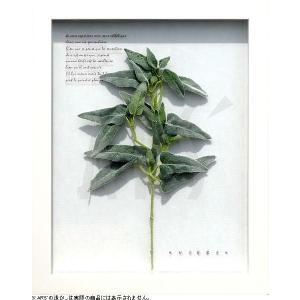 インテリアアート/リーフアートパネル ハーブフレーム フロミス(タペストリー/ウォールアート/絵画 インテリア/北欧)|arsonline