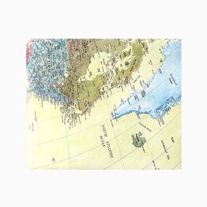 【 Paperwalletペーパーウォレット 】Worldmap 二つ折り財布【Printed on DuPont(TM)Tyvek(R)】|art-eco
