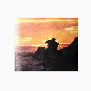 【 Paperwalletペーパーウォレット 】Dragon Rock 二つ折り財布【Printed on DuPont(TM)Tyvek(R)】|art-eco