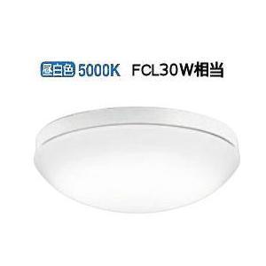 OW269013ND オーデリック LED軒下用器具|art-lighting