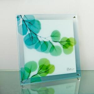 レントゲンアートX Ray ガラスアート・ユーカリ(壁掛用)(Mサイズ) art1