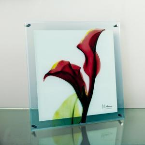 レントゲンアートX Ray ガラスアート・カラーレッド(壁掛用)(Mサイズ) art1