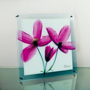 レントゲンアートX Ray ガラスアート・ジャーニークレマチス(壁掛用)(Mサイズ) art1