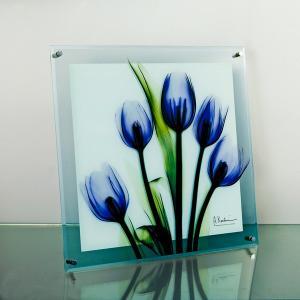 レントゲンアートX Ray ガラスアート・チューリップイマジン(壁掛用)(Lサイズ) art1