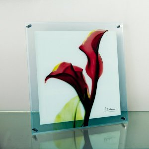 レントゲンアートX Ray ガラスアート・カラーレッド(壁掛用)(Lサイズ) art1