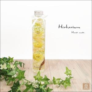 ハーバリウム Herbarium 高さ 21.0cm  シルバーデイジー オレンジ あじさい かすみ草 枯れないお花 インテリア雑貨 植物標本|artboxkyoto