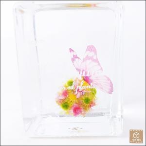 ハーバリウム Herbarium コロコロハーバリウム 蝶々 高さ 8.0cm インテリア雑貨|artboxkyoto