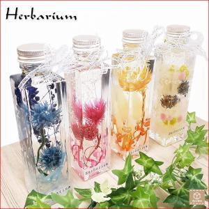 ハーバリウム Herbarium 高さ 17.0cm ストロングボトル リボン付き インテリア雑貨 植物標本|artboxkyoto