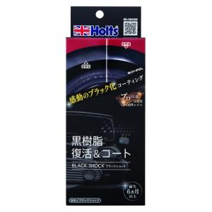 R-FINE ブラックショック 黒樹脂パーツ 黒ツヤ復活 色褪せ防止 再劣化防止 ホルツ MH683 articlestore