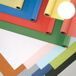 ジャンボロール画用紙R 白 900mmx10m巻 【 紙 色紙 造形 製作 】|artloco