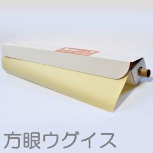 ロール じょうずに上質 1090x788mm 20枚入 色方眼 ウグイス 【 ロール紙 絵画 模造紙 紙 】|artloco