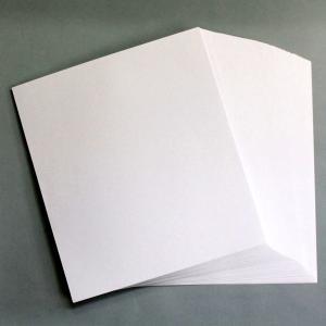 練習用 色紙 画仙紙 100枚束 【 色紙 短冊 展示 用紙 】|artloco