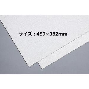厚さ:0.3mm  サイズ:457×382mm  片面にキャンバス状の型押しをした画紙です。  アク...