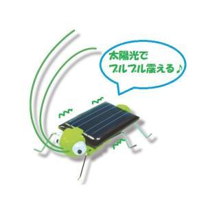 完成サイズ:幅23×長さ50×高さ14mm(触覚部分は含みません) 電源:太陽電池 工作時間の目安:...