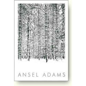 アンセル・アダムス 雪の松林 【写真ポスター】|artposters