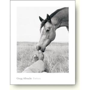 【フォトポスター】アルブラフト Partners(馬)|artposters