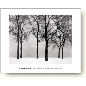 【写真ポスター】ハリー・キャラハン シカゴ 1950年|artposters
