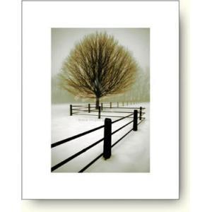 デヴィッド・ロレンツ・ウィンストン 孤独 【アートポスター】|artposters