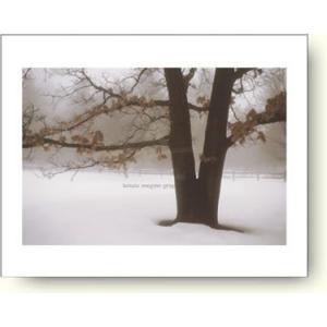 デヴィッド・ロレンツ・ウィンストン 静けさ 【アートポスター】|artposters