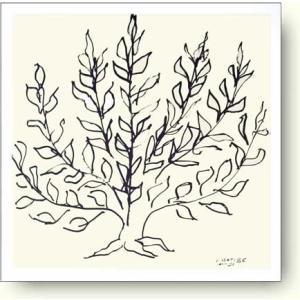 アンリ・マティス 茂み, 1951年 Henri Matisse: Le Buisson II【アートポスター】|artposters