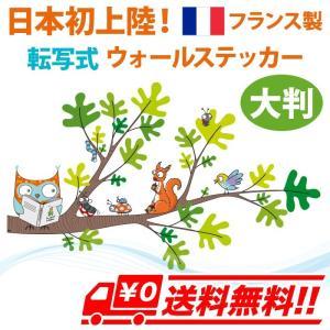 ちょっとお勉強 フランス製 ウォールステッカー 転写タイプ 壁紙 はがせる カラフル かわいい キッズ 子供 北欧 インテリア アニマル 動物 ポップ セリーゴロ arts-wig