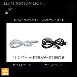 LEDストリングライト 2芯タイプ用パワーコード/プロ施工用/プレミアムスリムイルミネーション|artworks