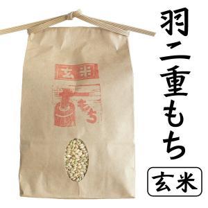 令和元年産 もち米 羽二重もち(玄米) 農薬不使用 ありがとんぼ農園 1kg|arumama