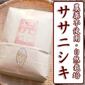 新米 平成29年産 自然栽培米 ササニシキ 玄米(精米無)農薬不使用 無肥料 1kg|arumama