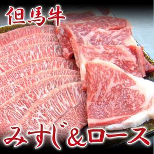 牛肉 但馬牛 みすじ&リブロース|arumama
